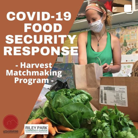 An image of the poster for the Harvest Matchmaking Program