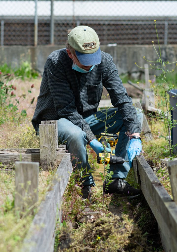 An image of a person wearing a mask and gloves, working in the garden