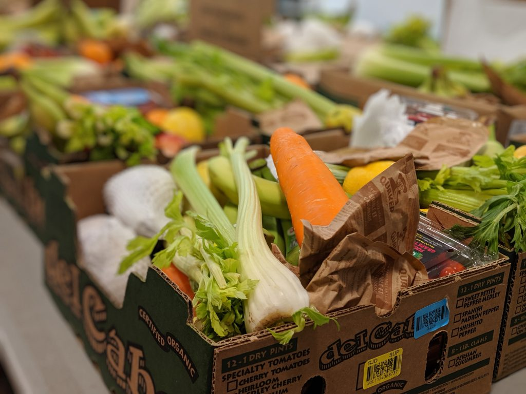 An image of cardboard boxes filled with carrots, celery, lettuce and other fresh veggies