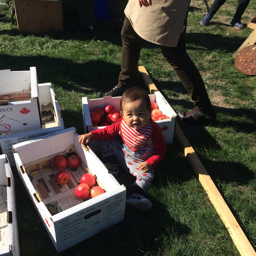 An outdoor image of a parent and young child taking a look at boxes of tomatoes