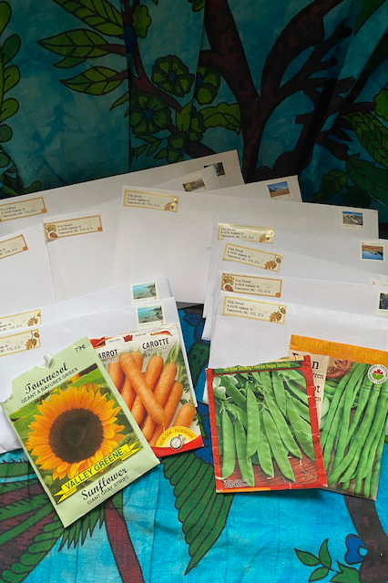 An image of seed packets in front of stamped and addressed envelopes